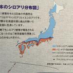 siroari_map